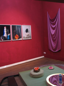5 Studioblueten-Installation View-, 2009, C_print found objects colour, size varies
