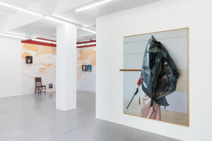Gallery view 'Flying Shells'-Thorsten Brinkmann-1