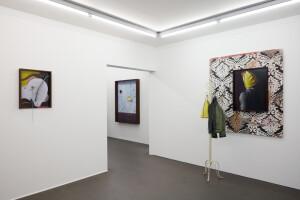Gallery view 'Flying Shells'-Thorsten Brinkmann-20