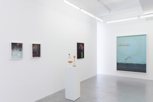 Gallery view 'Flying Shells'-Thorsten Brinkmann-2