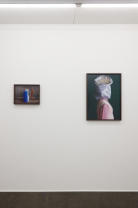 Gallery view 'Flying Shells'-Thorsten Brinkmann-22