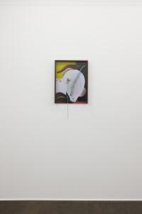 Gallery view 'Flying Shells'-Thorsten Brinkmann-23