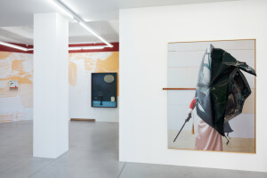 Gallery view 'Flying Shells'-Thorsten Brinkmann-3
