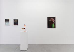 Gallery view 'Flying Shells'-Thorsten Brinkmann-4