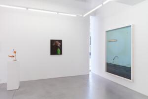 Gallery view 'Flying Shells'-Thorsten Brinkmann-6